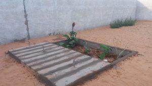 Sistema de Saneamento Ecológico na comunidade de Canudos, município de Barra
